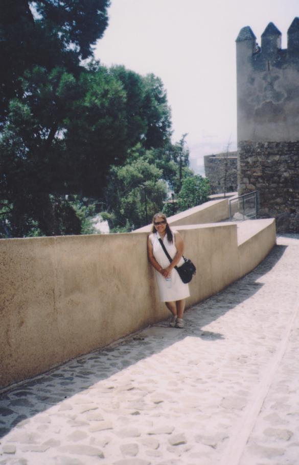 Fortaleza de Alcazaba.